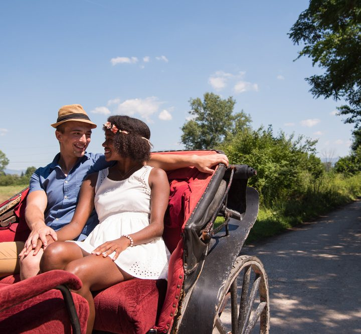 Explore Parks and Historical Sites in Charleston on a Horse Drawn Carriage